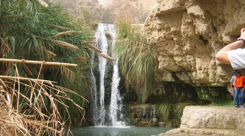 Dead Sea Reserve and SPA Ein Gedi_05